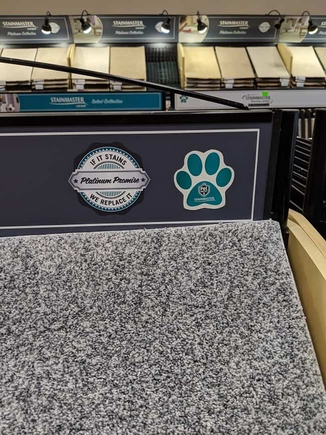 pet-friendly carpet options